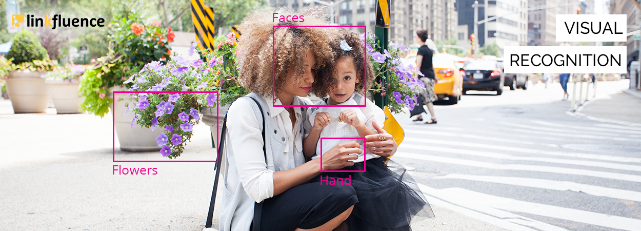 Image Recognition - Linkfluence
